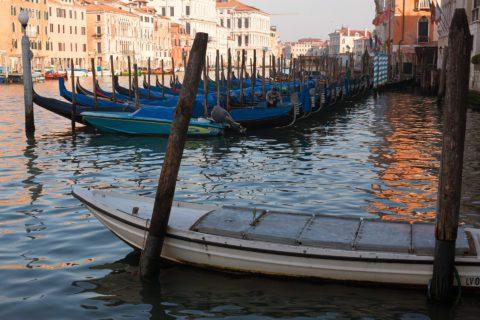 Gondole in Canal Grande - Venezia