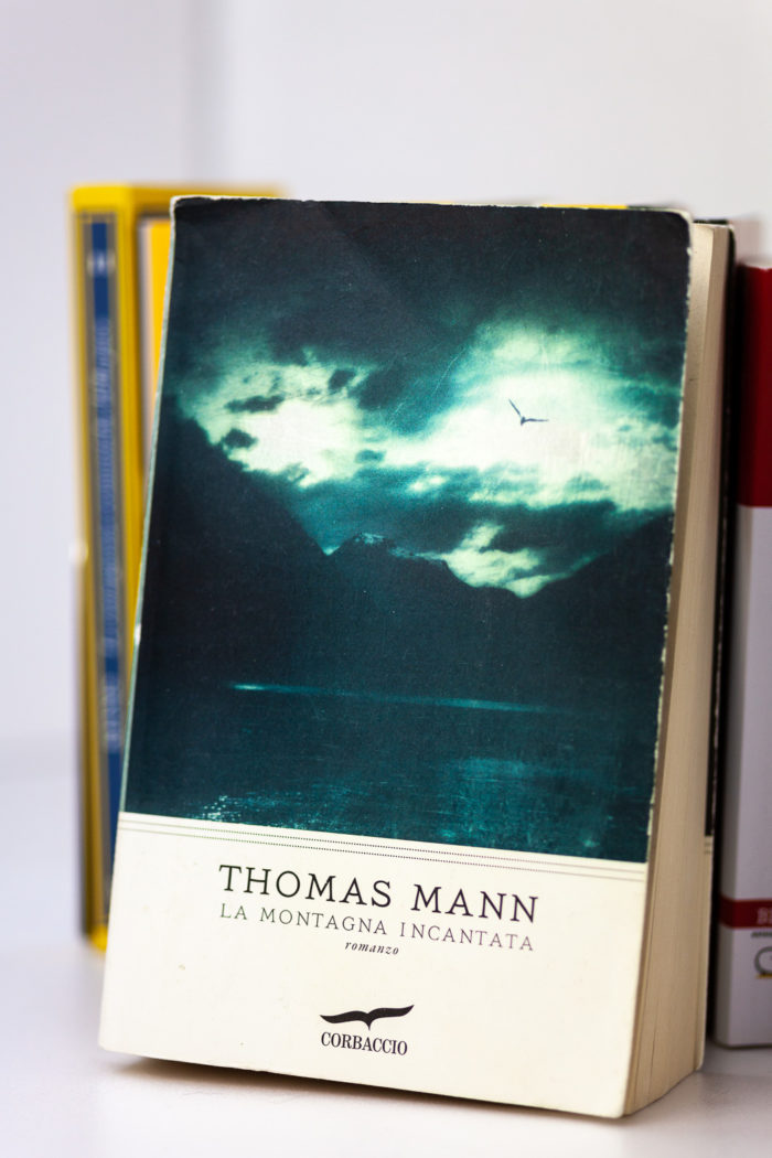La Montagna Incantata Tomas Mann